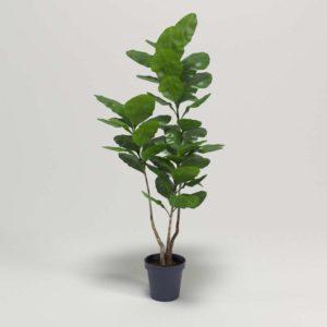 Planta Interior 3D con Maceta