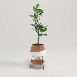 Dipped Clay Pot Anthropologie