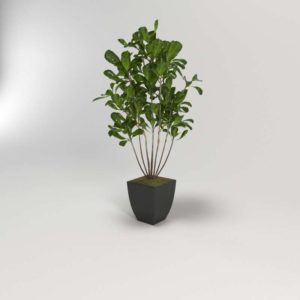 Planta 3D con Maceta Metálica