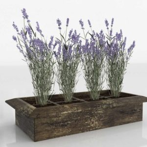 Lavender Wood Planter Box 3D Model