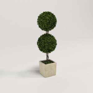 Topiary Planter with Tree 3D Model