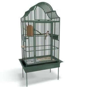 Bird Cage Home Decor