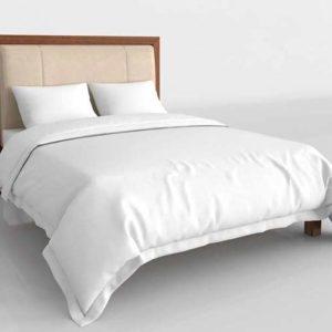 Glancing Eye 3D Model Standard Bed 08