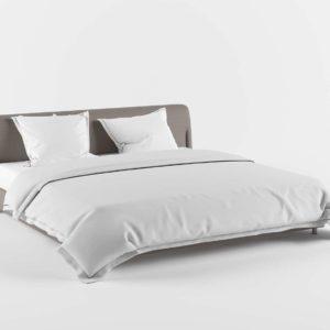 Glancing Eye 3D Model Standard Bed 05