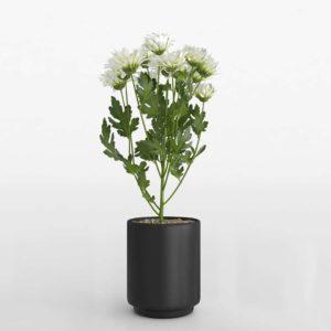 Maceta 3D IKEA Fejka con Chrysanthemum