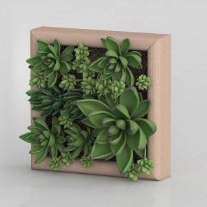 Modelo 3D Cuadro de Plantas Elia